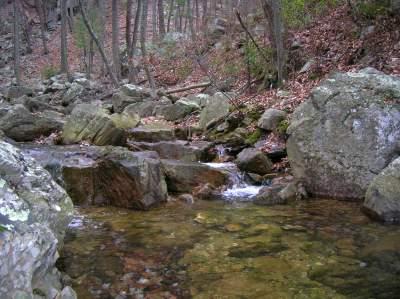 hiking in the Shenandoah National Park, Virginia