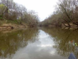 A view along the Pamunkey River